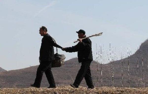 Ez a 2 férfi 10 év alatt 10 000 fát ültetett, mégsem csak emiatt példamutató a történetük!