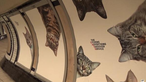 Ebben a londoni metrómegállóban meglepő dologra cserélték a reklámokat!