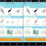 Már okostelefonunkkal is könnyen azonosíthatjuk a madarakat!