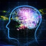 Számos olyan intelligenciatípus létezik, amit az IQ-teszt nem mér! Íme a legfontosabbak: