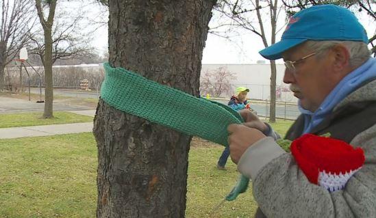 Ezért kötnek egyre több helyen sálat a fákra – megható oka van:
