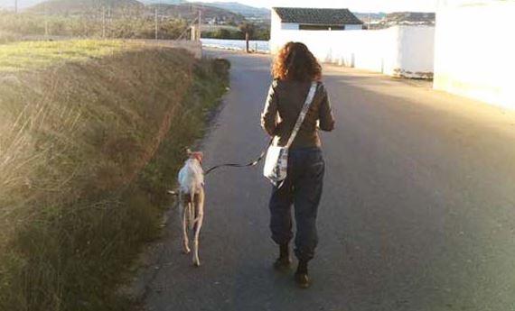Ez a sorsára hagyott, törött lábú kutya nem mindennapi helyre vezette az állatorvost!