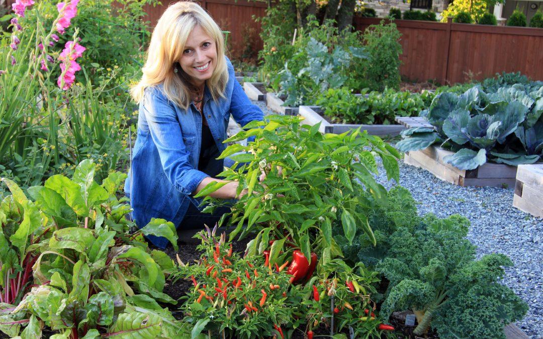 Tavaszi kertészkedés a vaszati segítségével