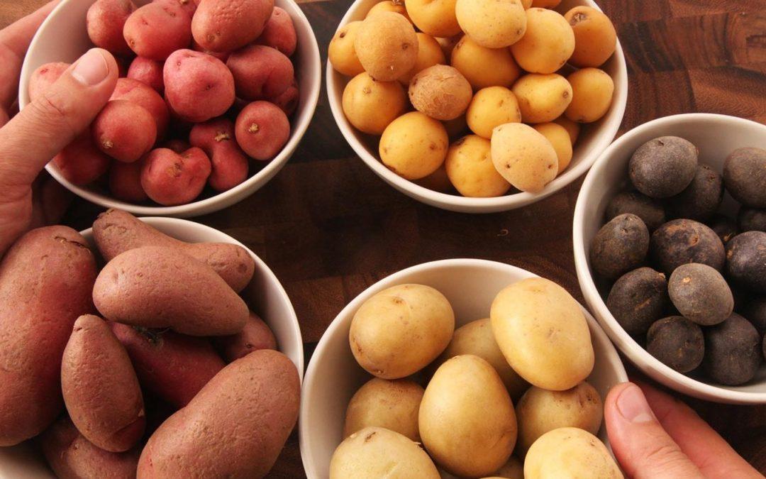 Mostantól egyszerűen megtudhatjuk, milyen krumplit veszünk és eszünk