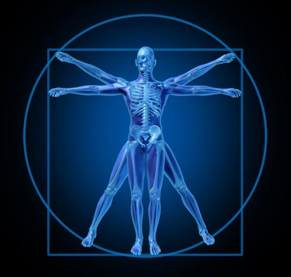7 meglepő tény az emberi testről