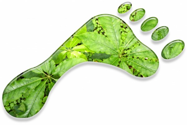 Neked vajon mekkora az ökológiai lábnyomod? Egy rövid teszt segítségével megtudhatod!