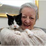 Macskája folyton a nő vállát ütögette, ám gazdája mégsem törődött vele. Ám mikor megértette, mit akar üzenni…